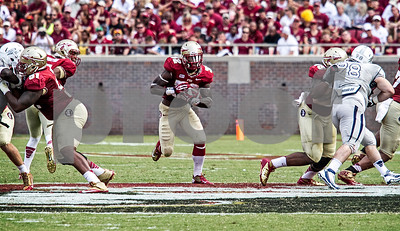 RB James Wilder runs through a truck sized hole Saturday as Bobby Hart and Reuben Carter open the way.  Wilder finished with 45 yards on 6 carries. The Seminoles defeated the Wolfpack 62-7 Saturday as Florida State improved to 2-0 on the season.