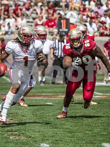 Eddie Goldman gives chase as Kelvin Benjamin moves up field on a reverse.  Florida State's spring came to a close as the Garnet faced the Gold in the annual Spring game.