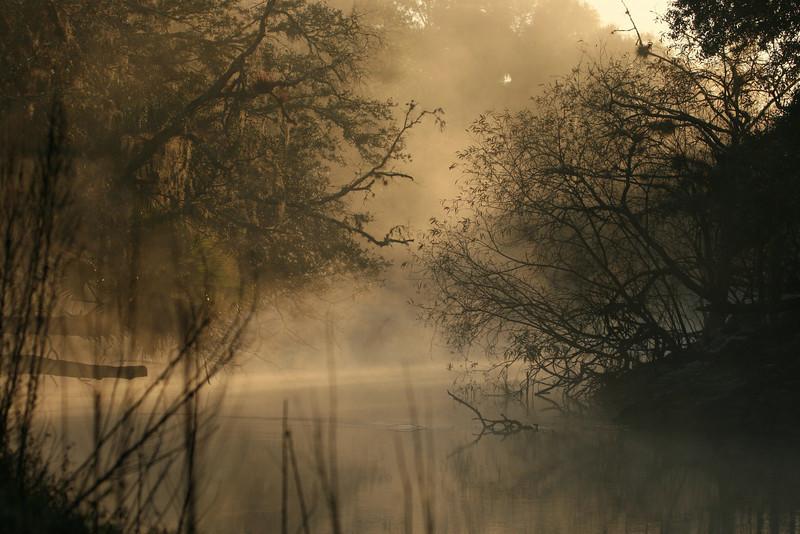Mist over the Econlockhatchee River