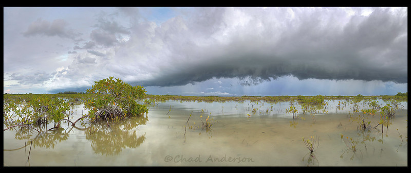 """Summer Storm Overtakes Lower Sugarloaf Key"""