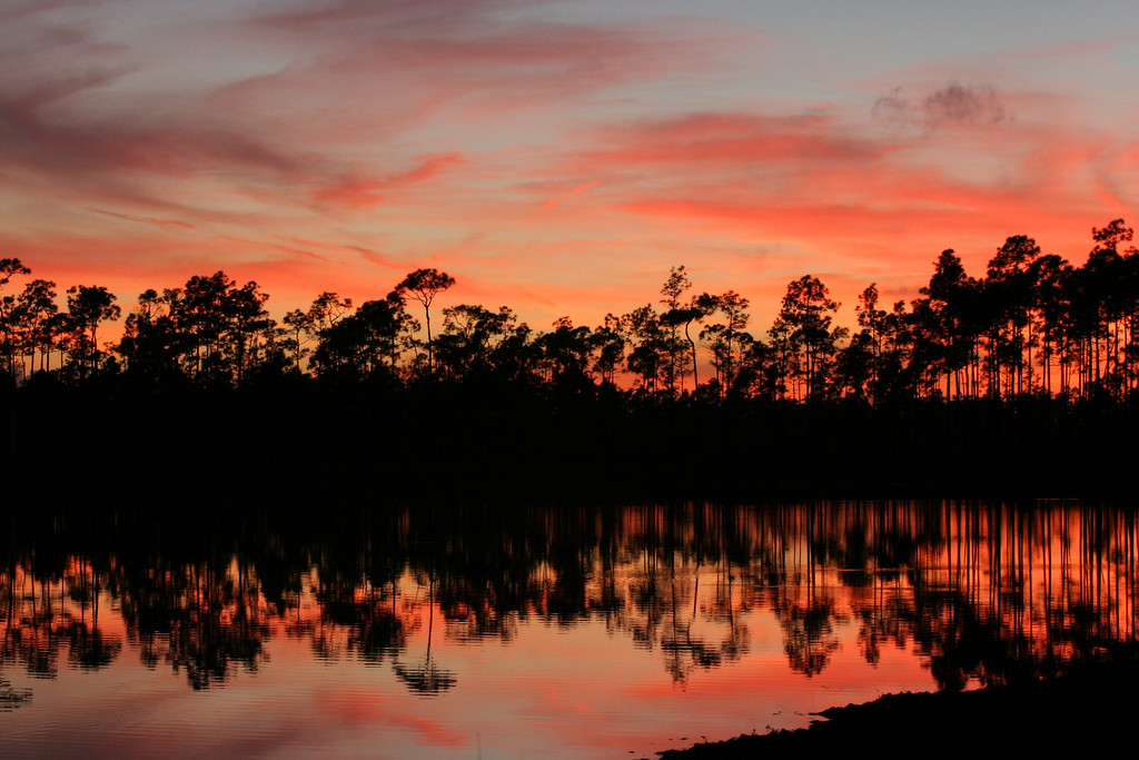 """Everglades at Sunset"""