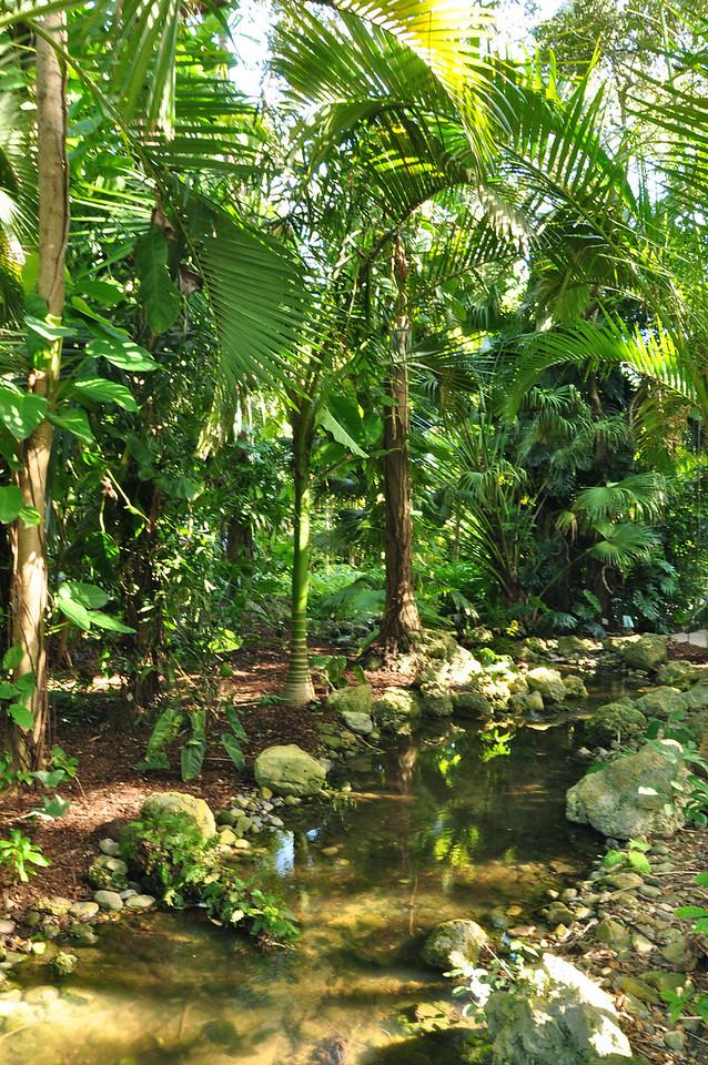 Fairchild Tropical  Botanic Garden, Coral Gables, Florida