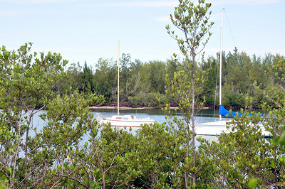 Oleta River State Park is one of the largest parks in South Florida with over 1,000 acres.  Located on the northern tip of Biscayne Bay it provides over 15 miles of mountain biking trails along with camping, fishing, kayaking and swimming activites.