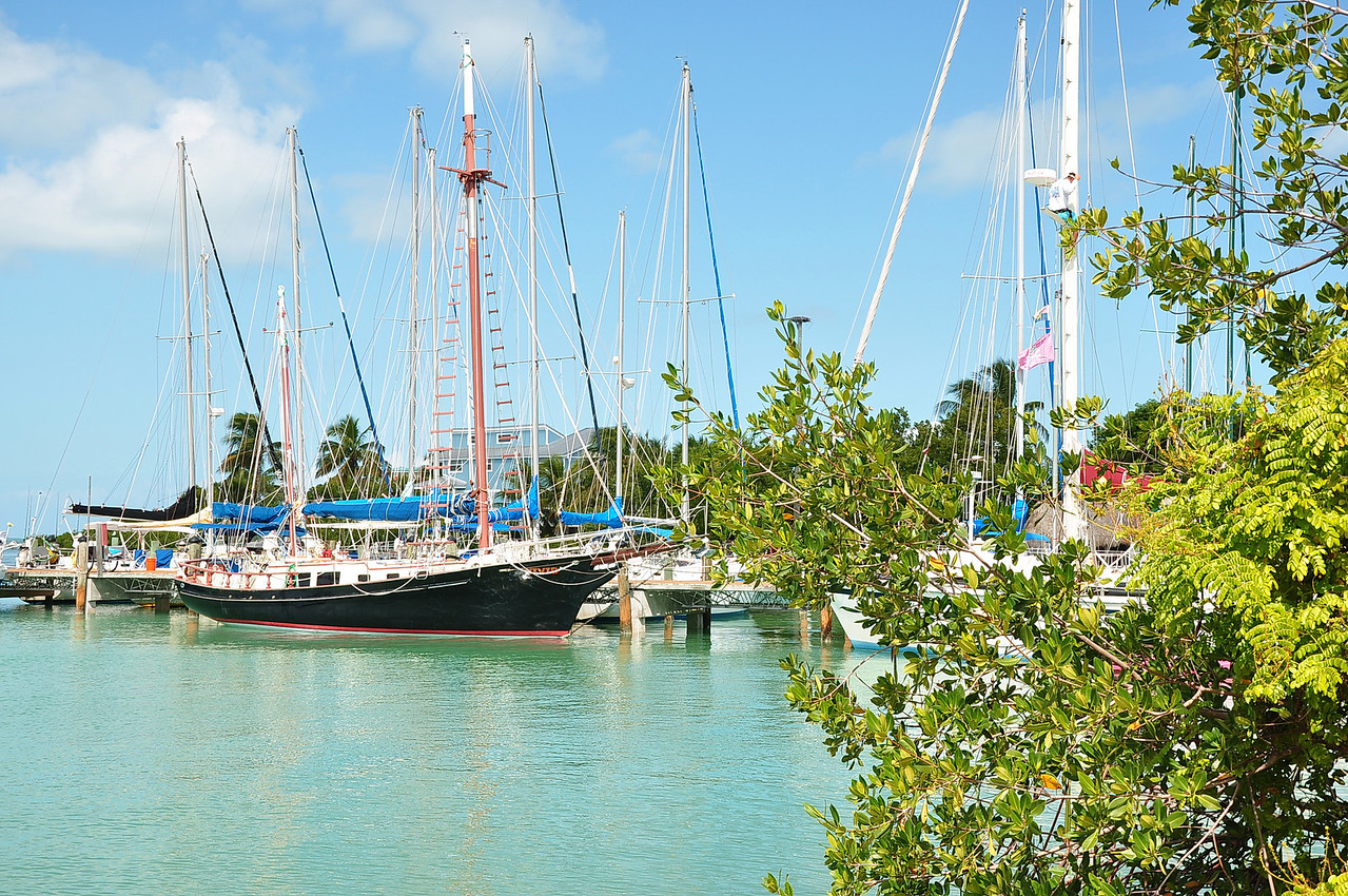 Sailboats at the marina in Islamorada, Florida Keys