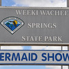 As one of Florida's original roadside attractions, the mermaids of Weeki Wachee Springs State Park have entertained visitors since 1947.  The famous springhead flows over 170 gallons of fresh water a day feeding the 12-mile Weeki Wachee River and the water park activities.