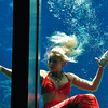 As one of Florida's original roadside attractions, the mermaids of Weeki Wachee Springs State Park have entertained visitors since 1947.  The famous springhead flows over 170 million gallons of fresh water a day feeding the 12-mile Weeki Wachee River and the water park activities.