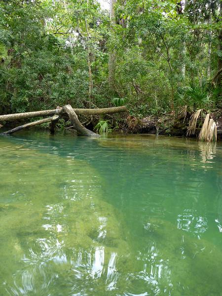 The Crack on Baird Creek