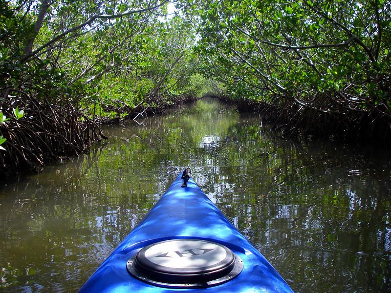 Kayaking the Woolverton Trail, Placida FL