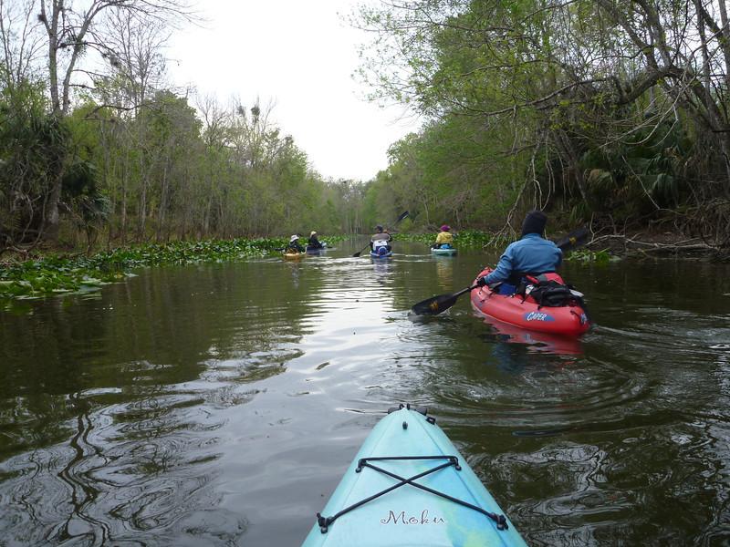 Silver River, Ocala, Florida