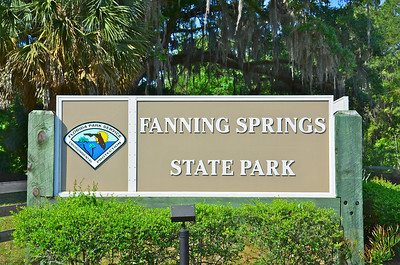 Fanning Springs produces between 40 and 60 million gallons of water daily that flow directly into the adjoining Suwannee River. The State Park is very popular for its swimming area and picnic grounds and the availability of overnight camping facilities.  This park is just west of Gainesville.