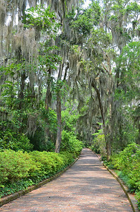 The Alfred B. Maclay Gardens State Park is as its name implies—it is a beautiful ornamental garden first, and then a park second.  When Alfred and Louise Maclay purchased this property in Tallahassee in 1923 for their winter home, they began planting for their enjoyment during the winter season and to this day the high blooming season is from January 1-April 30 after which they would return to their northern home.  And to our dismay this year when we arrived on April 24th, everything has already peaked and little was in bloom.  Oh well, we'll have to go back again—it's that pretty.
