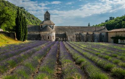 Abbaye Notre-Dame de Senanque (Abbey of Senanque)