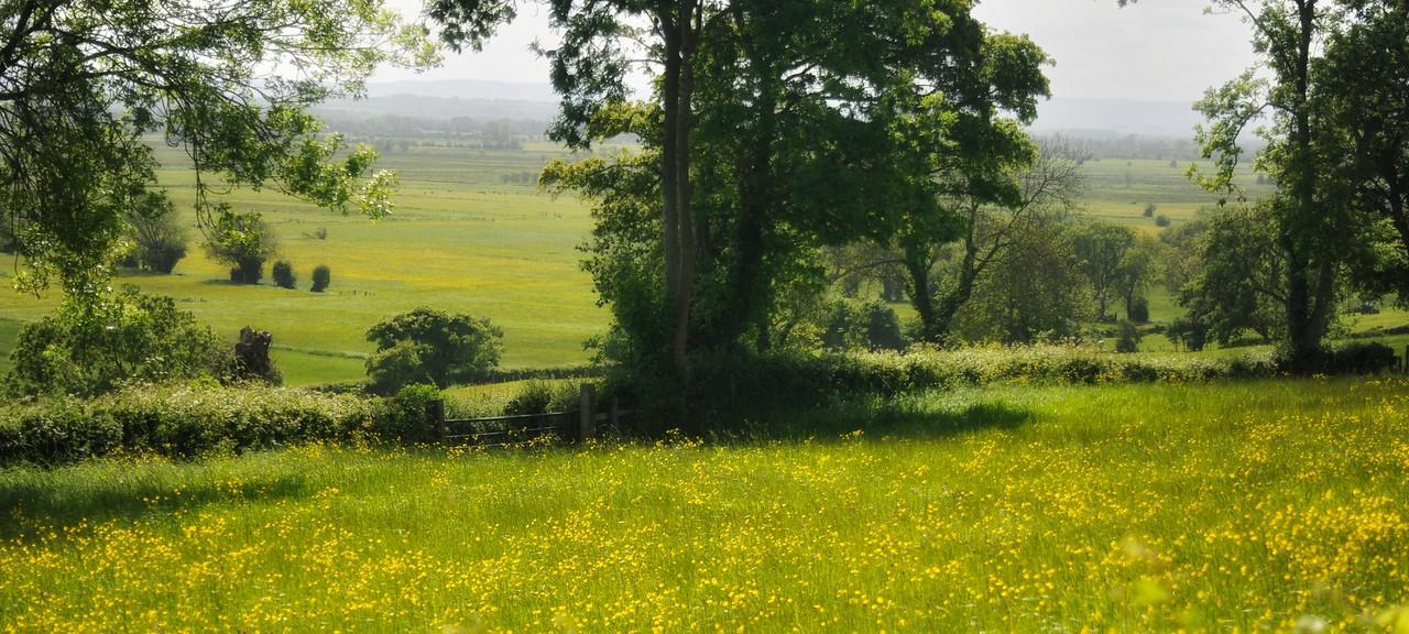 Somerset Levels