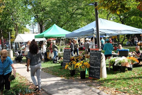 Flower Market at 1001 Queen St. W., Toronto