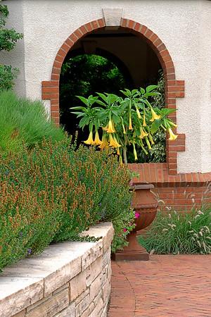 Garden  Landscape photos