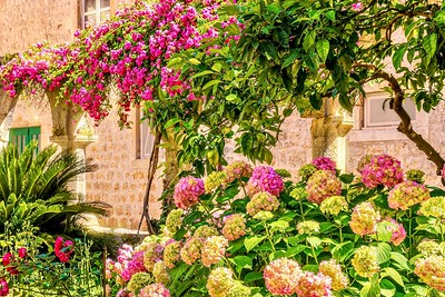 A pretty pink flower garden.