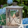 starfish lantern