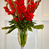 "February 15, 2015<br /> <br /> ""RADIANTLY RED GLADIOLUS""<br /> <br /> Whenever I am in the city, I stop by the hotel and check out the flowers. These red gladiolus must have been displayed for Valentine's Day. Also, The Alluvian was the official hotel for the cast of ""The Help"" movie.<br /> <br /> The Alluvian<br /> 318 Howard Street <br /> Greenwood, MS<br /> Official website: <a href=""http://www.thealluvian.com/index.php"">http://www.thealluvian.com/index.php</a><br /> <br /> My Homepage:  <a href=""http://www.Godschild.smugmug.com"">http://www.Godschild.smugmug.com</a>"