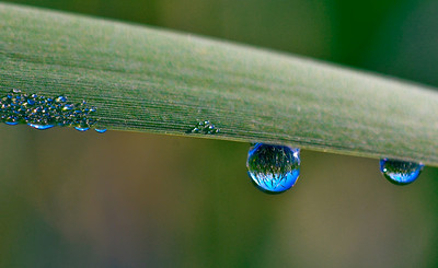 """Water Droplet Lens"""