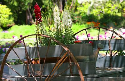 Descanso Gardens, CA