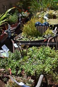 Landscaping Gardening Flowers 081819 TracySaundersArt yes (6)