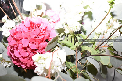 Landscaping Gardening Flowers 081819 TracySaundersArt yes (18)
