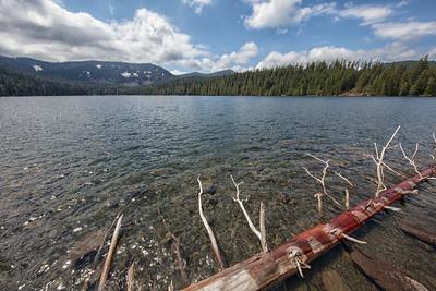 Lost Lake Log foreground 5-18-18