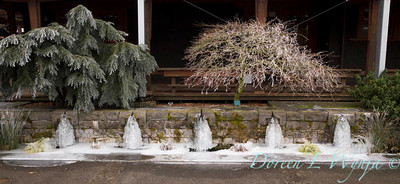 Water Feature_9268