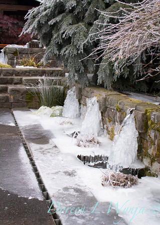 Water Feature_9270