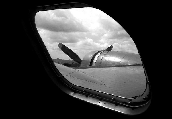 Wing And Window