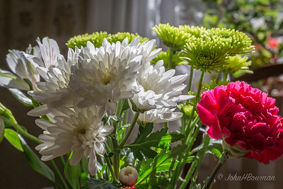 Flowers & Ornamentals