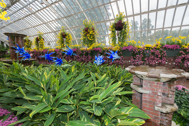 Phipps Conservatory<br /> Pittsburgh, Pennsylvania<br /> MSK_4434 - 10/30/17 2:24:51 PM