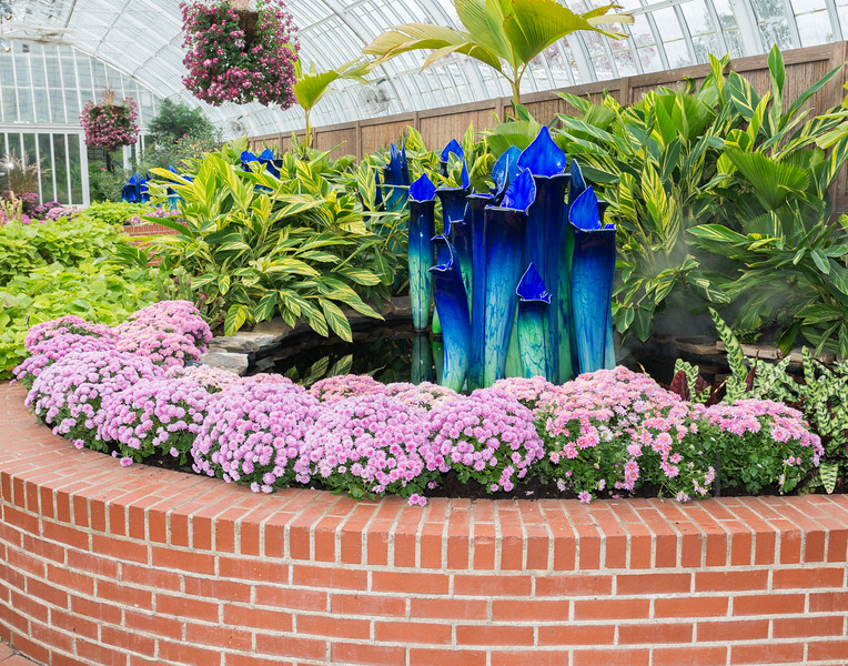 Phipps Conservatory<br /> Pittsburgh, Pennsylvania<br /> MSK_4384 - 10/30/17 1:56:45 PM