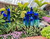 Phipps Conservatory<br /> Pittsburgh, Pennsylvania<br /> MSK_4386 - 10/30/17 1:57:21 PM