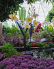 Phipps Conservatory<br /> Pittsburgh, Pennsylvania<br /> MSK_4458 - 10/30/17 2:40:03 PM