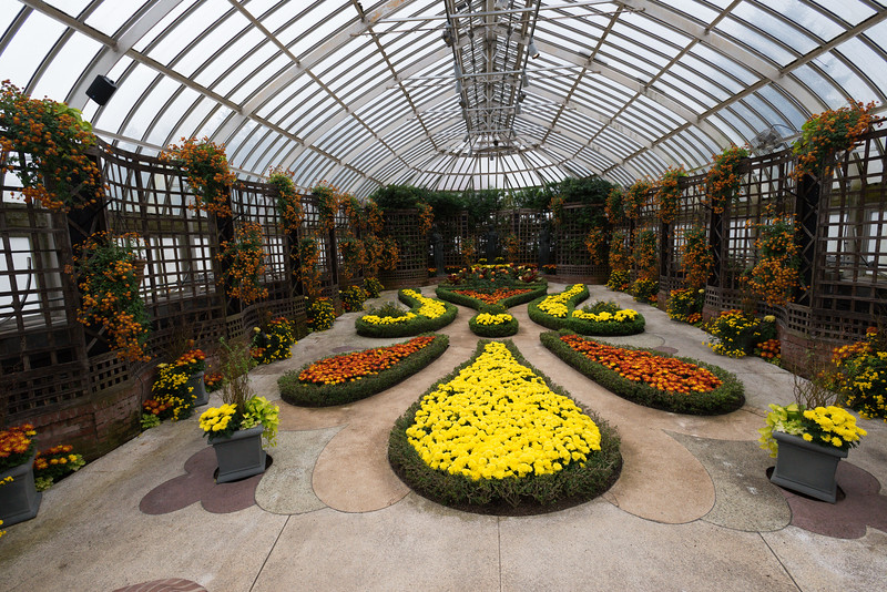 Phipps Conservatory<br /> Pittsburgh, Pennsylvania<br /> MSK_4453 - 10/30/17 2:37:09 PM