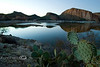 Paddle Cactus with Roosevelt Lake Behind It - Arizona 2008