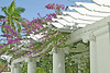 Beautiful Gardens at the Flagler Museum Palm Beach Florida 2007