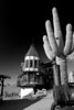 Giant Sugarro Cactus - Superstition Mountains AZ 2008