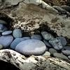 Beach Rocks, Dungeness Spit