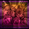Sunset Rose - Stained Glass Series