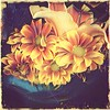 Vintage Bouquet - Faded Beauty