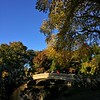 Bow Bridge - Late Summer in Central Park