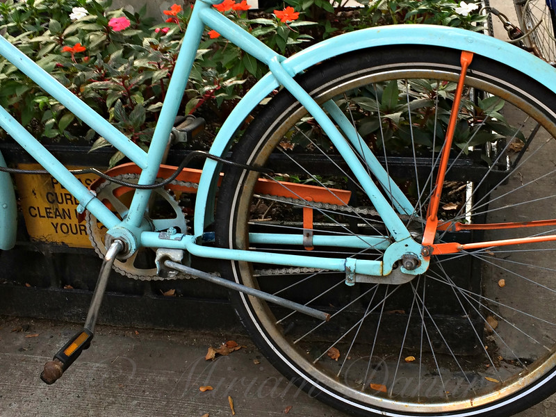 Bicyclette Bleu - The Blue Bicycle