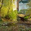 Dusk at Gapstow Bridge - Central Park in Spring