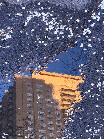 Blossom Snow - World in a Puddle