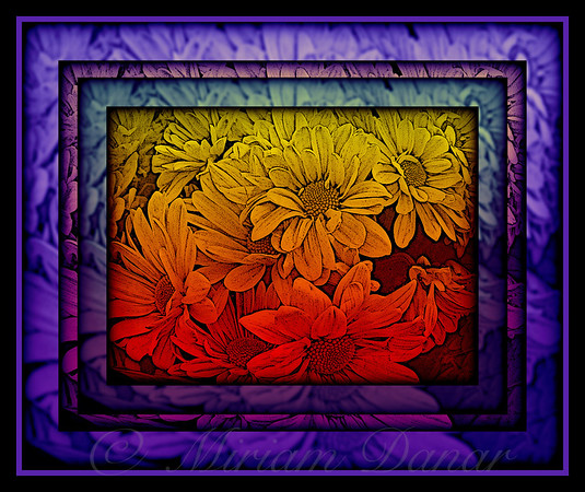 Purple Passion Flower Power - Stained Glass Series