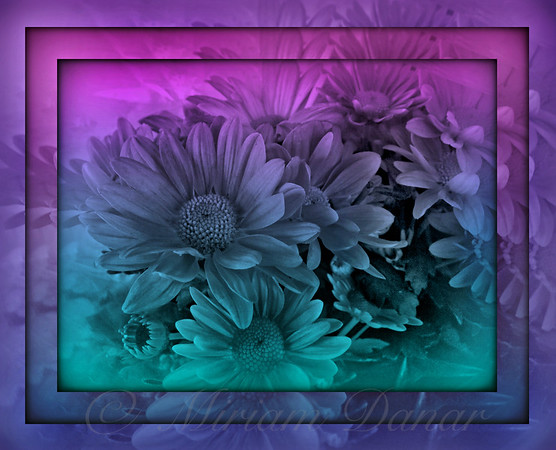 Pastel Garden Dawn - Stained Glass Series