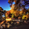 Bow Bridge - Central Park in Autumn