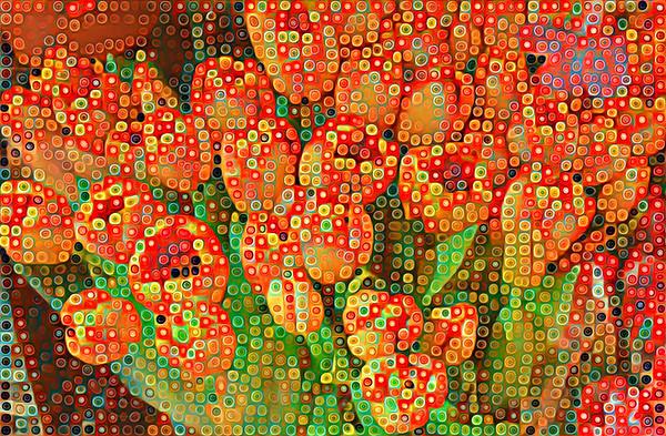 Happy Dots - Orange Tulips of Summer